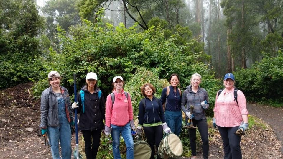 PMI-SFBAC-volunteers-at-Mt.-Sutro-Open-Space-Reserve-through-our-Sustainability-program.jpg